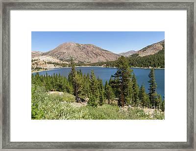 Ellery Lake Tioga Pass Yosemite California Dsc04314 Framed Print