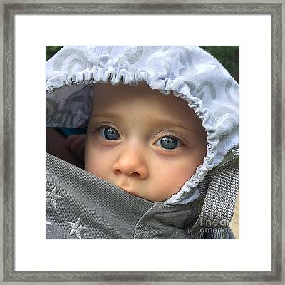 Blue Eyes Framed Print by Gregory Schultz