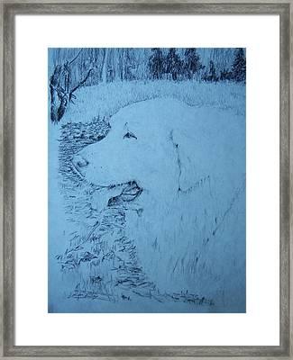 Ellie Framed Print by Ken Day