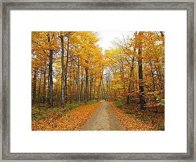 Framed Print featuring the photograph Ellison Bay by Greta Larson Photography