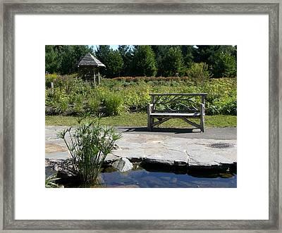 Elm Bank - Bench Framed Print by Nancy Ferrier
