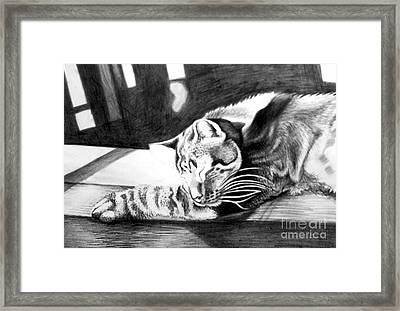 Elmer The Cat Framed Print by Genevieve Esson
