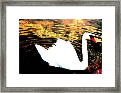 Eloquence By Earl's Photography Framed Print by Earl  Eells a