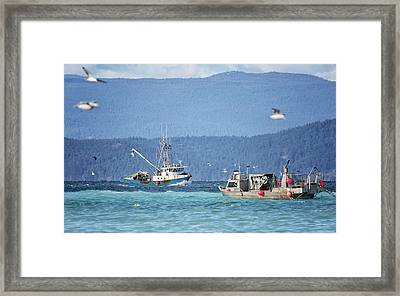 Framed Print featuring the photograph Elora Jane by Randy Hall