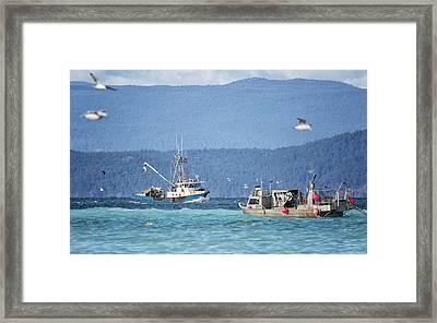 Elora Jane Framed Print by Randy Hall