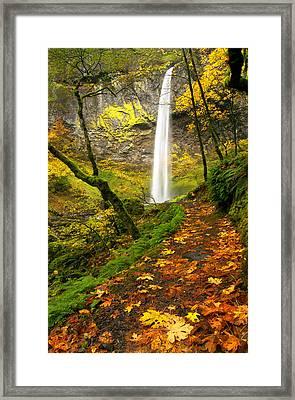 Elowah Autumn Trail Framed Print by Mike  Dawson