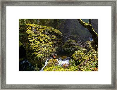 Elowah Falls Framed Print by Steve Warnstaff