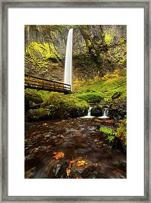 Elowah Perspective Framed Print by Mike  Dawson