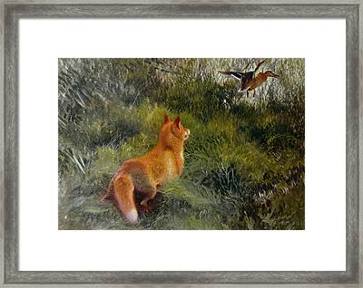 Eluding The Fox Framed Print