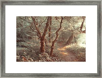 Elvish Forest. Nature In Alien Skin Framed Print by Jenny Rainbow