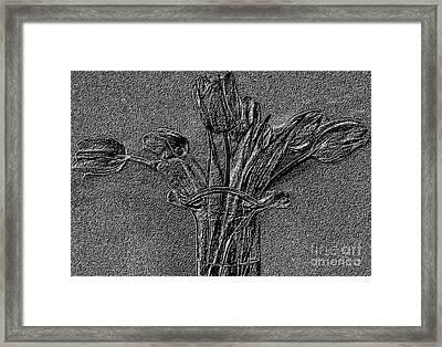 Embossed Tulip Abstract Framed Print by Marsha Heiken