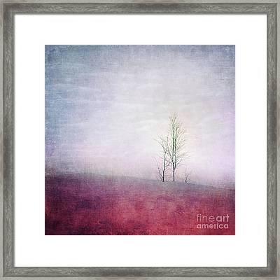 Embracing Solitude Framed Print by Priska Wettstein