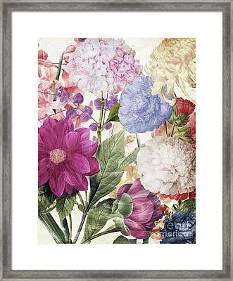 Embry II Framed Print by Mindy Sommers
