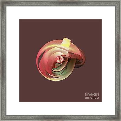 Embryo Abstract Framed Print by Linda Phelps