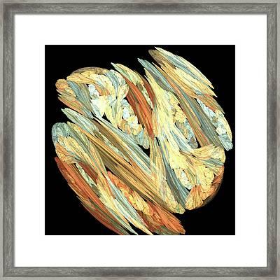 Embryonic Framed Print by Bonnie Bruno