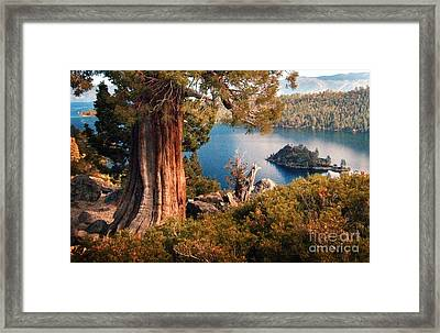 Emerald Bay Overlook Framed Print by Norman  Andrus
