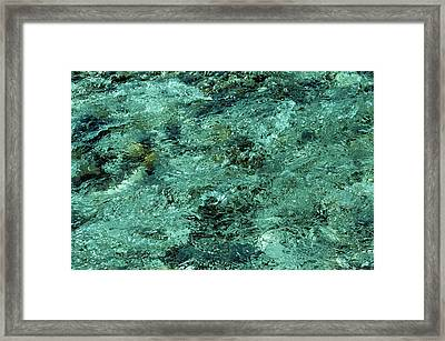 The Emerald Beauty Framed Print