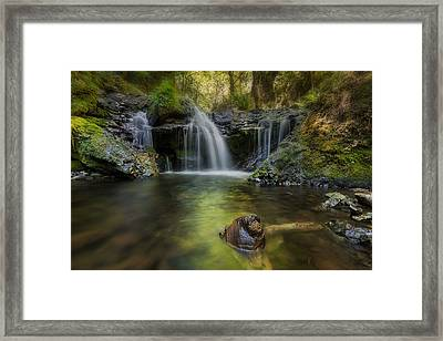 Emerald Falls Framed Print by David Gn