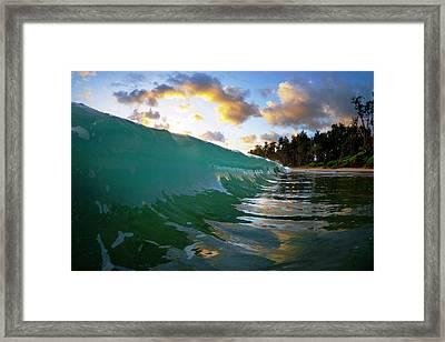 Emerald Garden Framed Print by Sean Davey