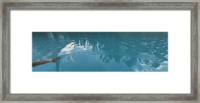 Emerald Lake Glacier Waters Framed Print by Angela A Stanton