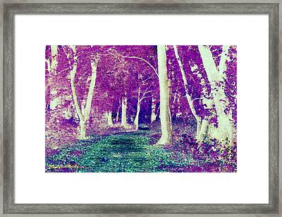 Emerald Path Framed Print