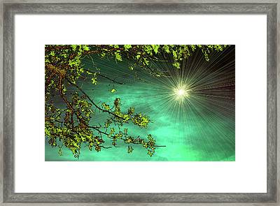 Emerald Sky Framed Print by Tom York Images