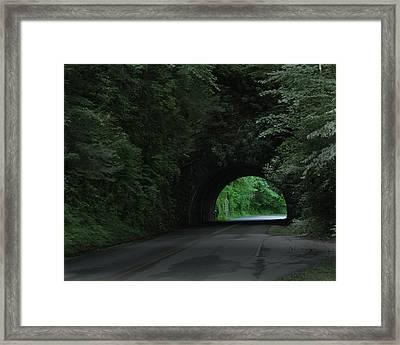 Emerald Tunnel Framed Print