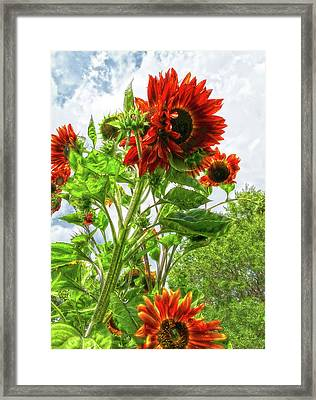 Emeralds And Fire Framed Print