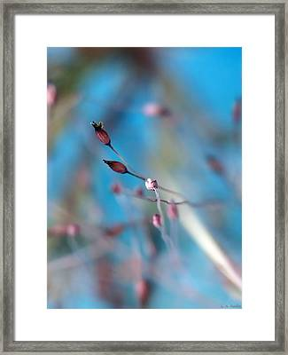 Emerge Framed Print