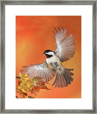 Framed Print featuring the photograph Emergency Landing by Gerry Sibell