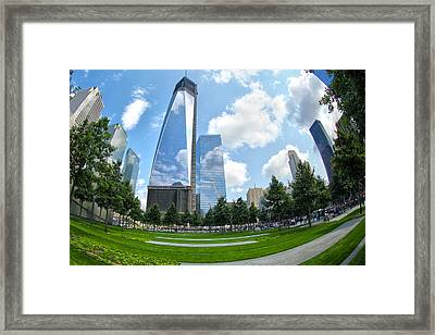 Emerging Stronger Framed Print by Mitch Cat
