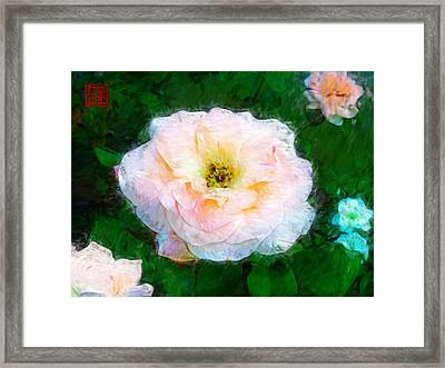 Emily's Rose Framed Print