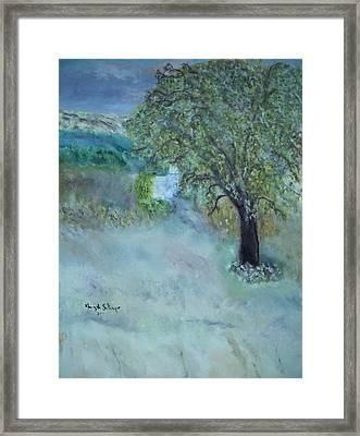Emily's Tree Framed Print