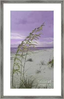 Emma Kate's Purple Beach Framed Print