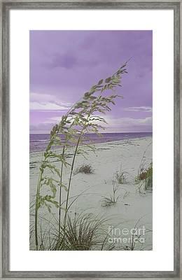 Emma Kate's Purple Beach Framed Print