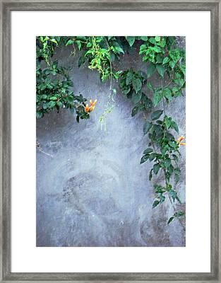 Emmas Wall Framed Print