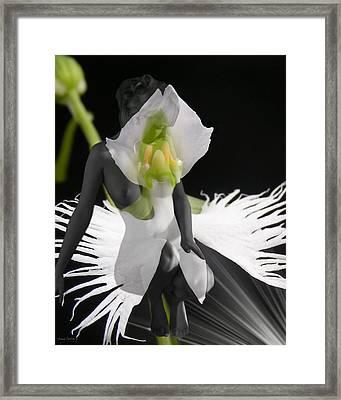 Emmy Framed Print by Torie Tiffany