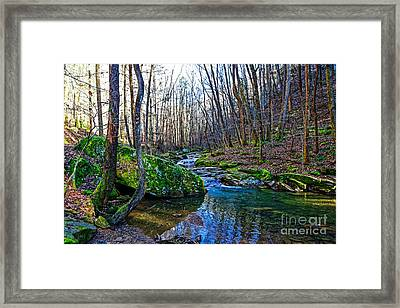 Emory Gap Branch Framed Print