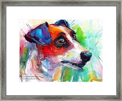 Emotional Jack Russell Terrier Framed Print