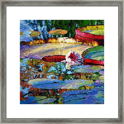 Emotions Of Color Light And Texture Framed Print