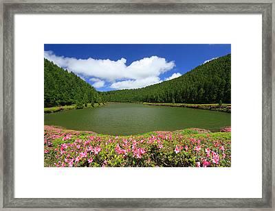 Empadadas Lakes Framed Print by Gaspar Avila