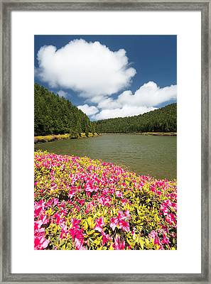 Empadadas Lakes II Framed Print by Gaspar Avila