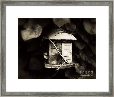 Empty Nest Framed Print by Rick Maxwell