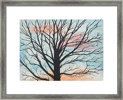 Empty Beauty Framed Print
