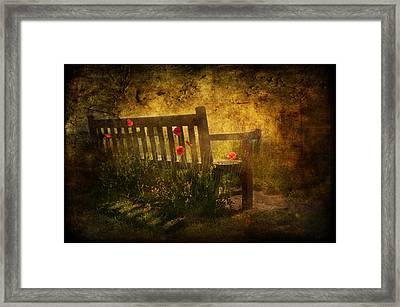 Empty Bench And Poppies Framed Print by Svetlana Sewell