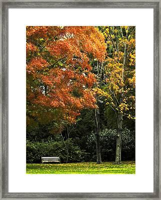 Empty Bench In The Park Framed Print by Carol F Austin