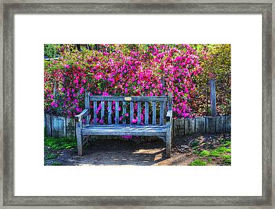 Framed Print featuring the photograph Empty Bench by Richard Stephen