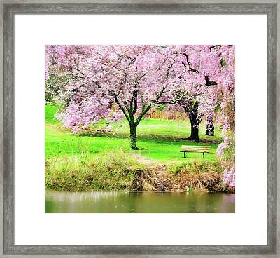 Framed Print featuring the photograph Empty Bench Surrounded By Spring Colors by Gary Slawsky