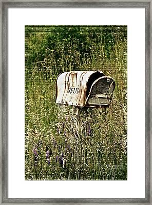 Empty Mailbox At 35476 Framed Print by Gwyn Newcombe