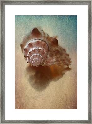Empty Nest Framed Print by Maggie Terlecki
